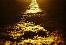 LIGHT,DAY,MORNING,SUN