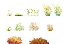Plants in book