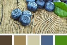 Colors / inšpirácie na kombináciu farieb, ako skombinovať farby s prostredím, napr. pri fotení