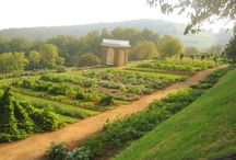 Gardens, Gardening, and Gardeners