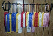 Callie's horse ribbons/ideas