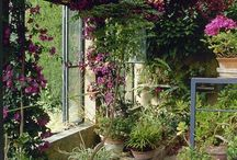 Creative Greenhouse(s) / All about greenhouses