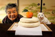 おばあちゃんとふくまるちゃん