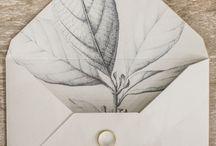 Paper & Card
