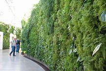 eco-gardens