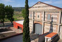Mas Amiel / visite du vignoble et des chais à Mas Amiel dans l'appellation Maury en Languedoc Roussillon Réservez avec winetourbooking.com