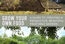 Allotments & Grow Your Own