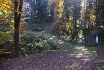 Nasze trasy - JESIEŃ / Our cross-country ski trails - AUTUMN