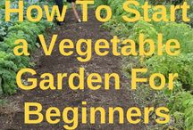 || Permaculture for Beginners / learn to use permaculture principles to grow your garden and homestead sustainably and become self sufficient.