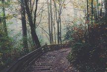 nature,places,adventure
