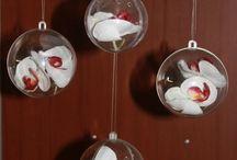 Sukkot Decorations