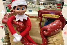 Christmas Decorating Ideas / Looking for more great holiday content? Check out my Christmas Round Up post at http://experimentalhomesteader.com/eh/christmas-round-up/ for more great content including DIY, recipes, articles on holiday plants and so much more! Sheri Ann Richerson's exotic gardening, elegant cooking, crafty creations, food preservation and animal husbandry... all on two and a half acres in Marion, Indiana! Subscribe to my newsletter at https://experimentalhomesteader.activehosted.com/f/5