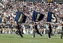 """Blue & Gold / For all the """"Fighting Irish"""" Notre Dame Fans!"""