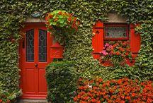 Doors! / by Rynda Moore