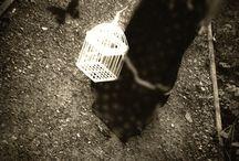 Conceptual photography