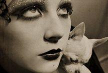 Chihuahuas / by Deborah LaTour