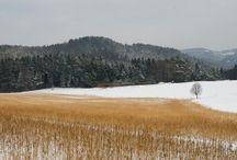 Fotos Landwirtschaft