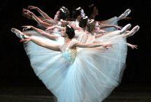 Dance / by Danielle Witt