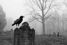 Cemetery ❤