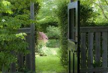 Fency / Fences