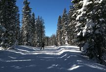 GRAND MESA  / Grand Mesa XC skiing on the World's largest flattop mountain, at 11,000 feet with 55 K of FREE XC trails groomed by Grand Mesa Nordic Council. All other XC areas in Colorado charge a trail fee.
