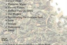 Magickal uses for plants/herbs