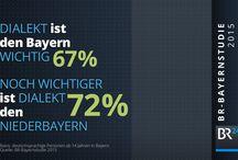 BayernStudie 2015