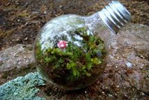 Eco Ideas / by Becky Parsons