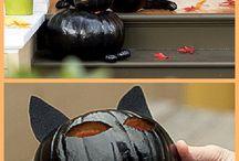 CAT Design-conception