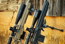 Arms & Guns & Bows & Crossbows