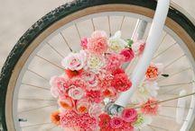 Key West Bicycle