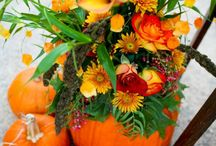 Fall Weddings / by Deana Collins