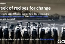 "World Oceans Day 2015 with #oceanrecipes / Our global campaign ""Save the Oceans, Feed the World"" continues. This time, in the frame of the upcoming World Oceans Day 2015, we are presenting #oceanrecipes from world famous chefs. Join the action, make a change & check the recipes through our Facebook or Twitter accounts!  / by OceanaEurope"