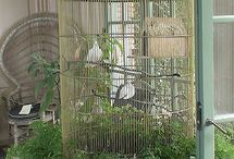 BIRD CAGE / by WayneSandy Crandall