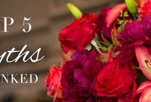 Interesting Blogs / Blogs posted by Boutique Silk Flowers and others we find interesting.