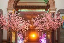 Blossom trees for weddings / Elevate your reception or ceremony setting with romantic blossoms trees.
