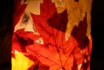 Fall Decorations / by Judy Hanses