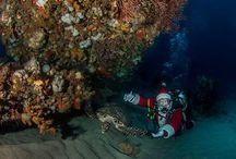 Somewhere / Under the sea