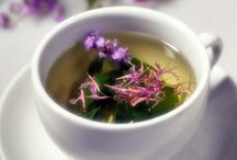 Herbal Remedies and Infusions / by Laurie Jamison Morrison