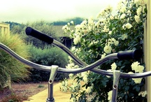 Bikes ♥