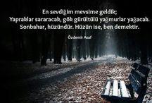 Şair Özdemir Asaf