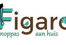 Figaro Dierenoppas / Ben bezig aan een website voor Figaro Dierenoppas.