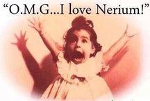 Nerium LifeStyle MTY MX