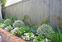 hedge gardens