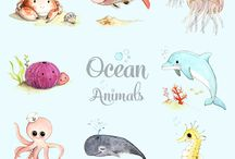 óceán animals