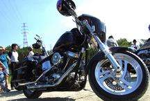 Harley Davidson / Me and my husband's garage