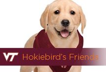 Hokiebird's Friends / by Virginia Tech Hokies Athletics