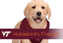 Hokiebird's Friends / by Virginia Tech Hokies Athletics