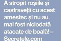 agrcol