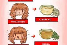 zioła i zdrowie